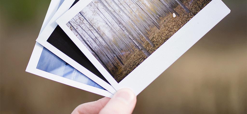 Plugin Review: Pixabay Images