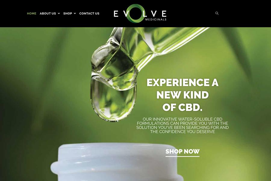 Evolve homepage